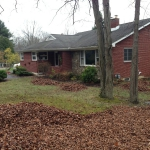 Landscaping - Before